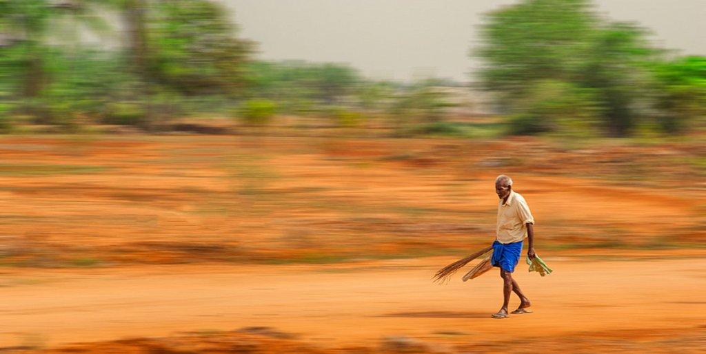 Indien-034.jpg